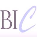 website logo bic